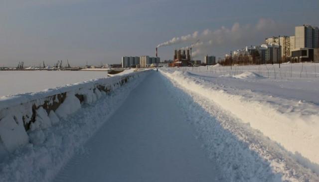 Onda de calor na Sibéria alarma cientistas